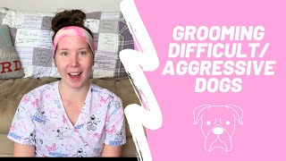 Grooming Difficult/Aggressive Dogs | Dog Grooming Career