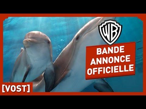 L'Incroyable Histoire de Winter le dauphin 2 (c) Warner Bros France