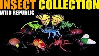Wild Republic ® Insect Collection - 10 riesige Insekten - Unboxing & Review
