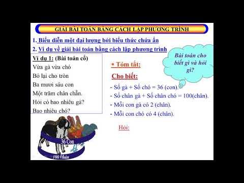 Bài giảng môn Toán 8 - Giải bài toán bằng cách lập phương trình