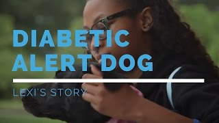 Diabetic Alert Dog: Lexi's Story