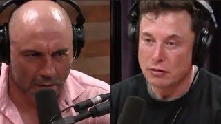 Joe Rogan - What Keeps Elon Musk Up at Night?