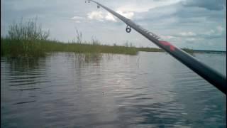 Как рыбалка на кадале