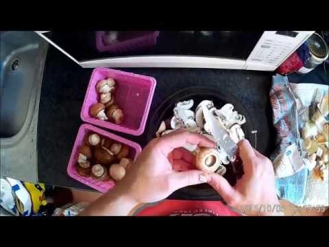 Pinwormok és ecet