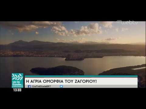 Η εισαγωγή του Σπύρου Χαριτατου » Για την Ελλάδα» | 14/03/19 | ΕΡΤ