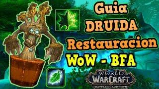 Guía Básica para Healer: Interface Addons Macros World of Warcraft