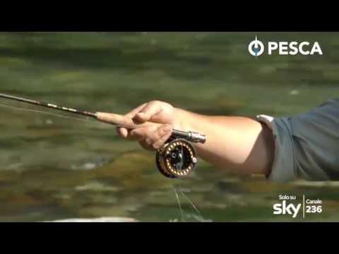 La caccia e la pesca di un maym