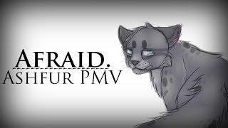 {WARRIORS} Ashfur PMV    Afraid