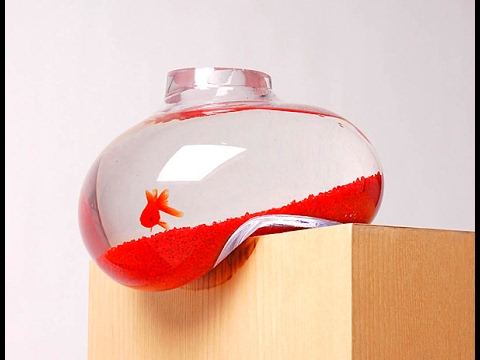 Top 30 aquarium decoration creative ideas and design