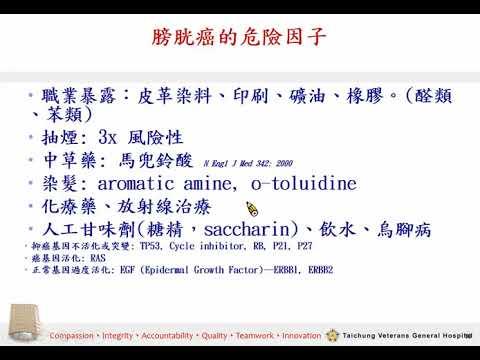 認識膀胱癌(陳正哲醫師)
