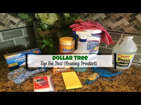 DOLLAR TREE HAUL | TOP 10 BEST CLEANING PRODUCTS | 2017