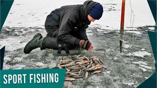 Ловля рыбы по первому льду отчет