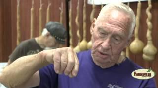 Mississippi Gourd Festival Shows Off Gourd Artists