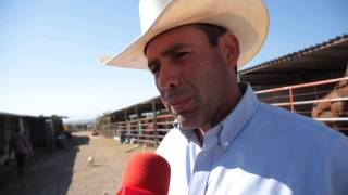 preview picture of video 'Tiene yegua dos mulas en Saltillo por primera vez'