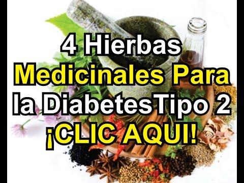 Estudios de caso con diabetes tipo 1