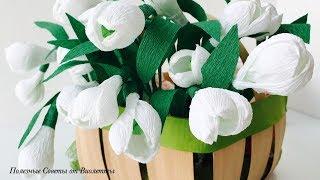 DIY: БУКЕТ ИЗ ПОДСНЕЖНИКОВ! Цветы из Гофрированной Бумаги!