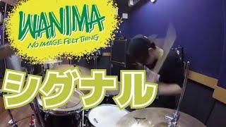 WANIMA「シグナル」を叩いてみたドラム
