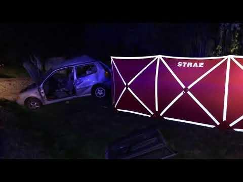 Wideo1: Śmiertelny wypadek na trasie Tylewice - Łysiny