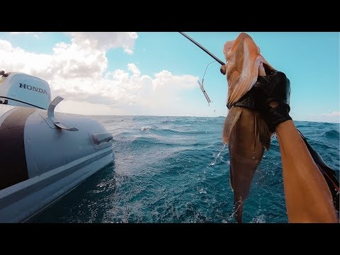 BOAT LIFE: Hunting For Lunch