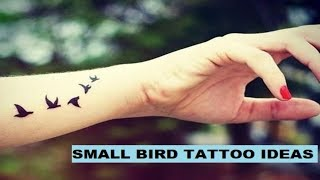 Small Bird Tattoo Ideas With Meanings / NEW 2019 DESIGNS