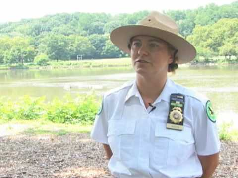 Urban Naturalist Leads Education Efforts in New York City Parks