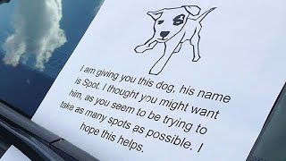 The Most Hilarious Windshield Notes Left on Cars