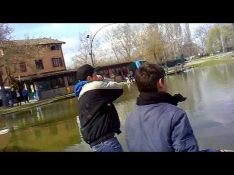 Pesca estiva di dialoghi video su pesca