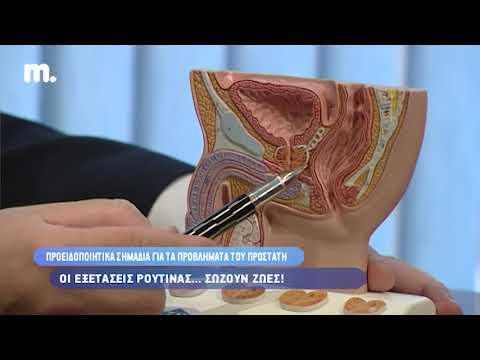 Fizzaryadka προστατίτιδα