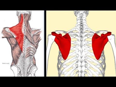 Ból pleców powyżej talii dyszą