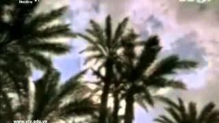 Khám Phá đất Nước Ai Cập Cổ đại Thuyết Minh   Khám Phá Thế Giới