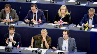 The Brief: Europe of Nations and Freedom - a closer look