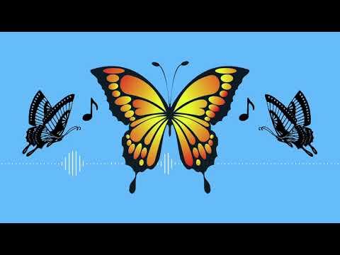 Butterfly Dance feat. Hatsune Miku [Vocaloid Original]