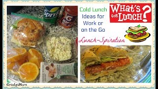 What's For Lunch? | Cold Lunch Ideas on the Go | GradysMom