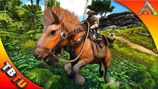 🚩ARK EQUUS TAMING! WHERE TO FIND & HOW TO TAME THE EQUUS! Ark: Survival Evolved V256 Gameplay