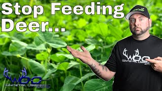 STOP SUPPLEMENTAL FEEDING DEER THEY KNOW HOW TO SURVIVE!!!