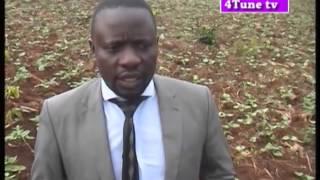 KIBOGA FARMERS  NEWS