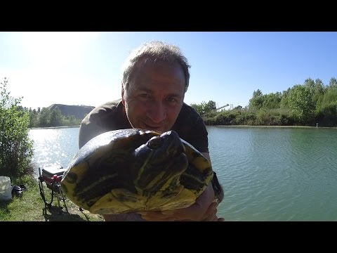 Il respiro impermeabile estivo per comprare una causa per pesca
