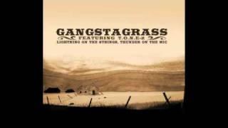 Gangstagrass- I'm Gonna Put You Down