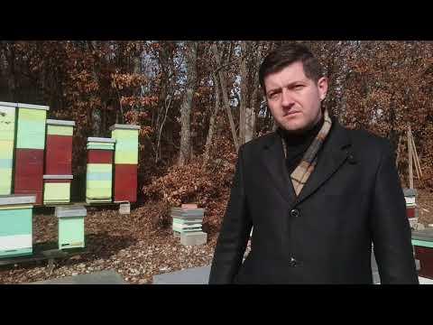 Пчеловодство Сербии, 09.02.2019