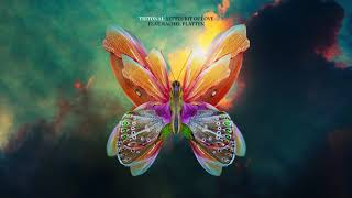 Tritonal Feat. Rachel Platten   Little Bit Of Love