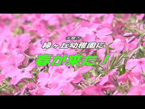 緑ヶ丘幼稚園に春が来た!