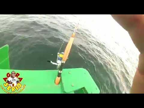 Rogerinho o Maior Pescador de Pano em alto Mar de Juquitiba