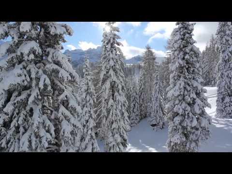 Skier à Madonna di Campiglio