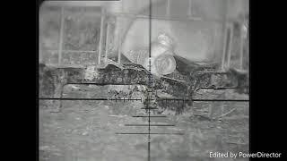 Snipercam Ratting