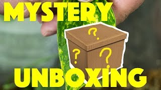 UNBOXING 9 RARE DART FROGS!!