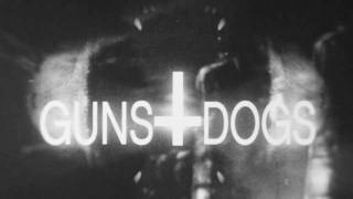 """Portugal. The Man """"Guns and Dogs"""""""