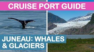 2019 Juneau, Alaska Cruise Port Guide: Whale Watching & Mendenhall Glacier Tour