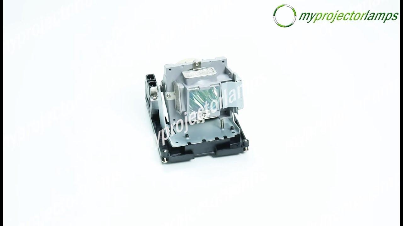 Vivitek DH976-WT Projector Lamp with Module