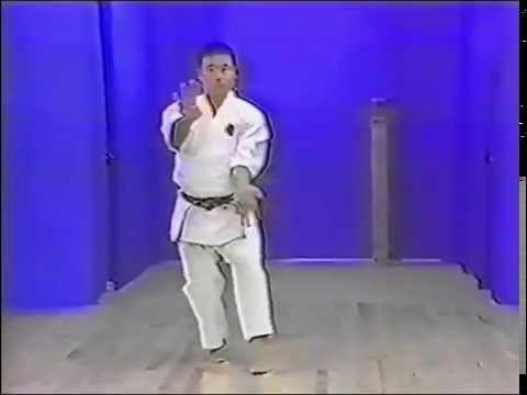 Goju ryu kata. Gekisai dai ni