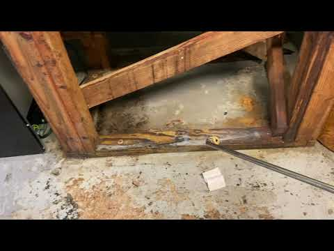 Grease Trap Attracting Cockroaches in Asbury Park, NJ